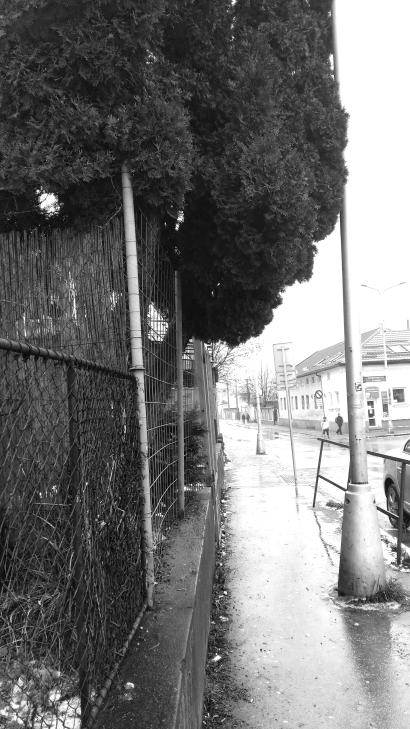 street_black.jpg