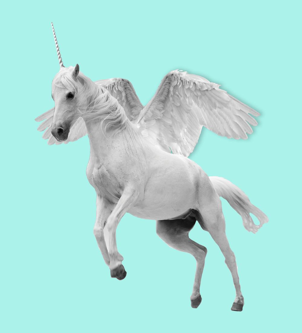 Unicorn Flying turq.png