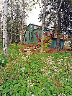 Tofte Cabin - Cabin owner Medura Woods approached Sarah Nettleton and the design team with a challenge in 1997 to transform a 950 sq. ft. 1947 cabin into a model of sustainable design. The list of goals and strategies included sustainability issues addressing waste, materials selection, orientation, daylighting, and energy production. The challenges at that time included scarce resources and information for solving the design problem. According to Nettleton, the process was educational as they pioneered a new approach to design. The results included a passive solar design with applications of both solar and wind systems grid inter-tied with battery backup.
