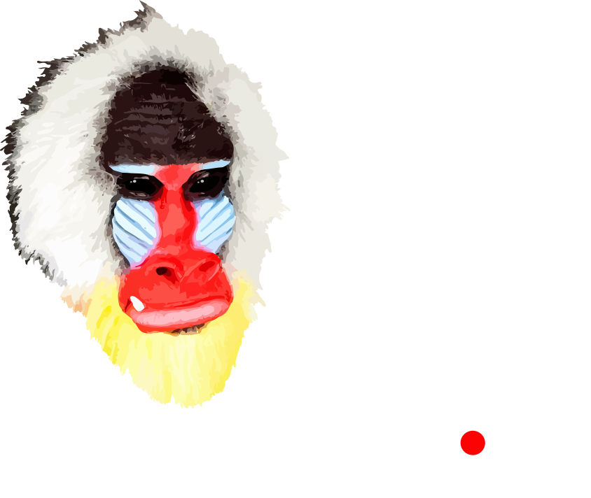 Bar Monkey Calisthenics