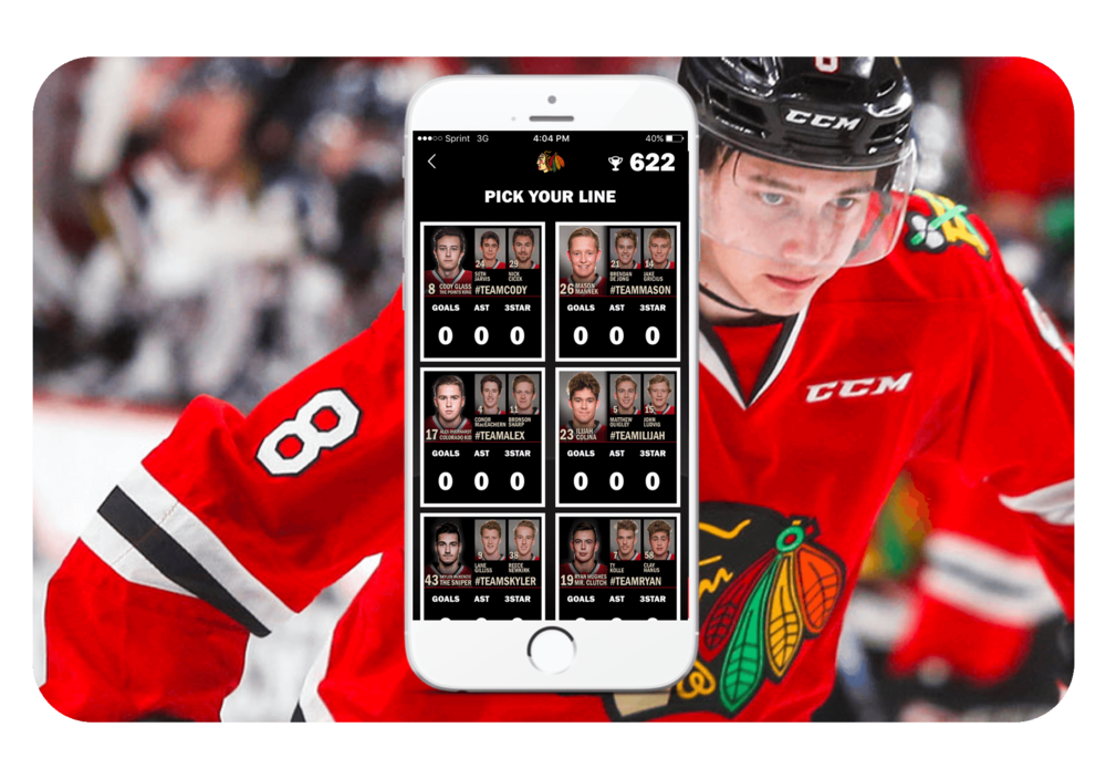 Winterhawks Fan Image.png