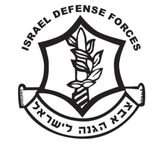 Inside the Israeli Defense Force -