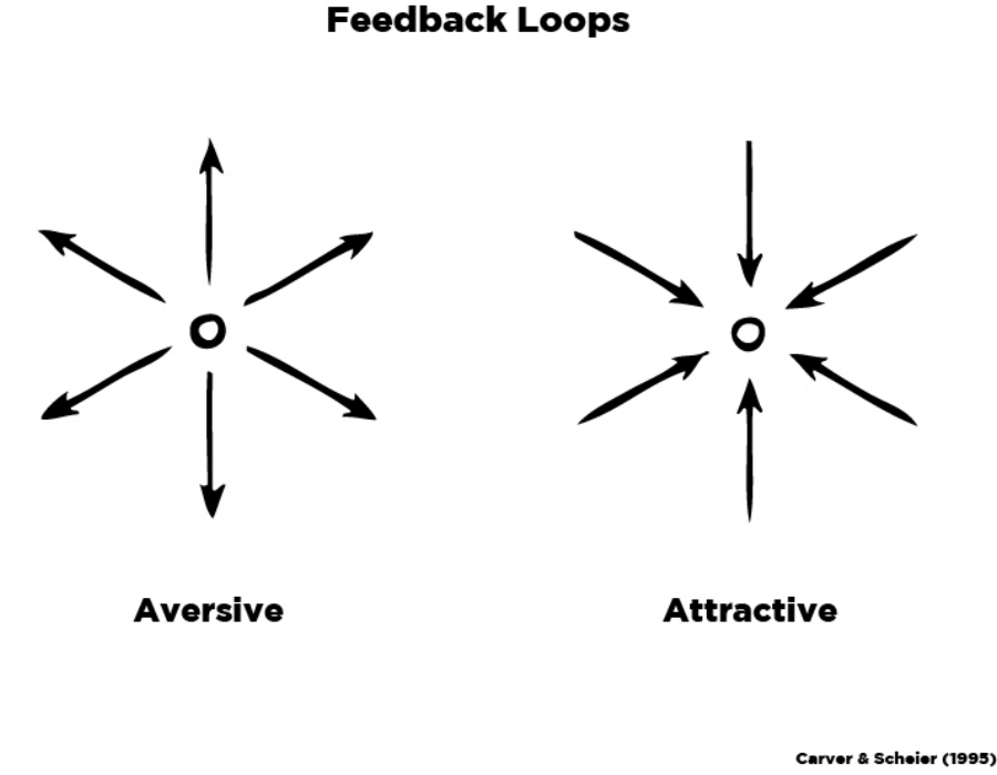 Feedback Loops-Updated v2.jpg