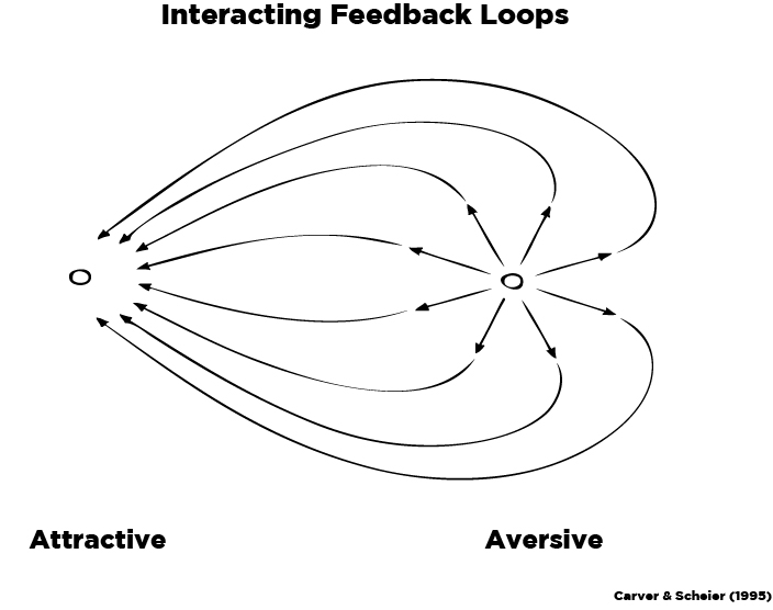 Interacting Feedback Loops-Updated.jpg