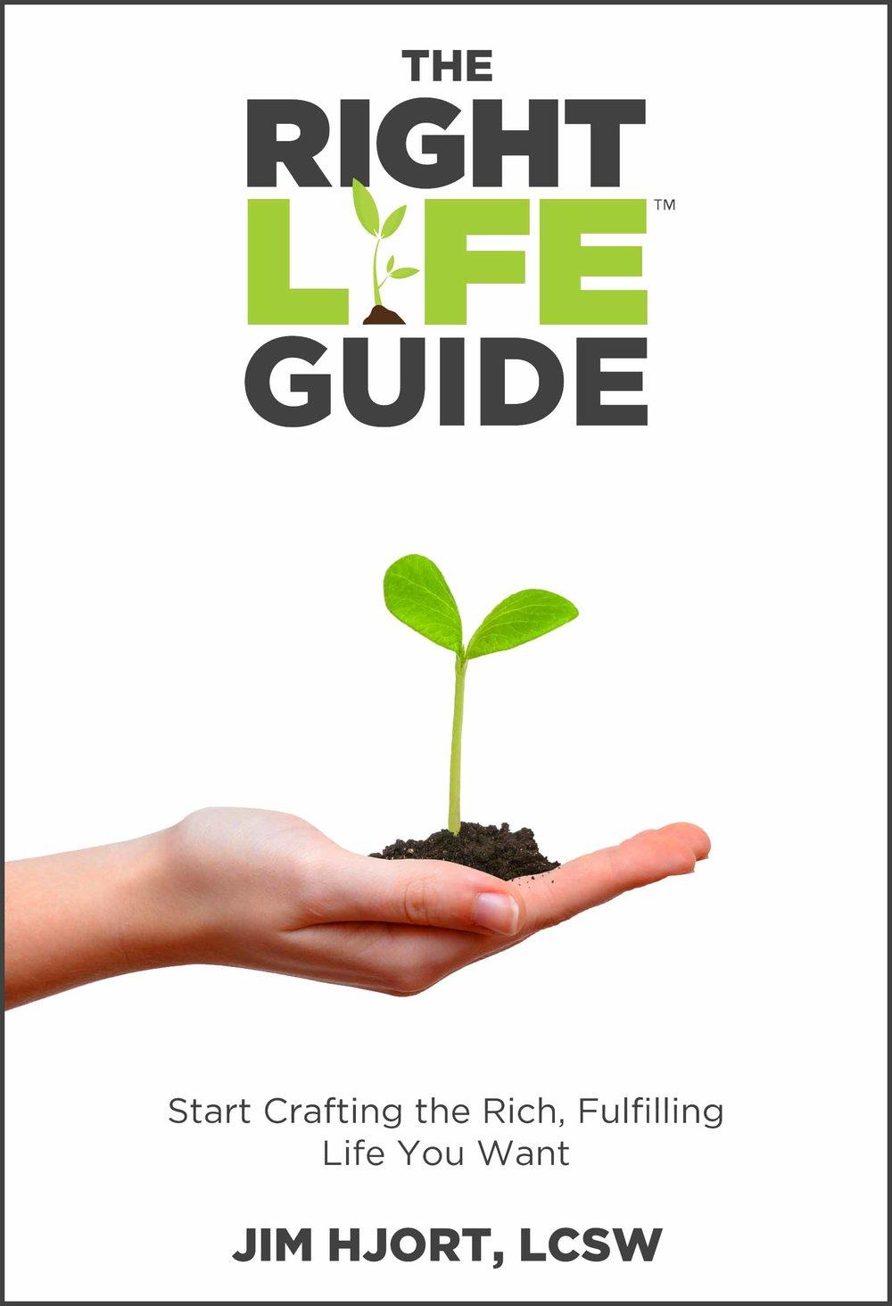 Right Life Guide eBook Cover v4-border.jpg