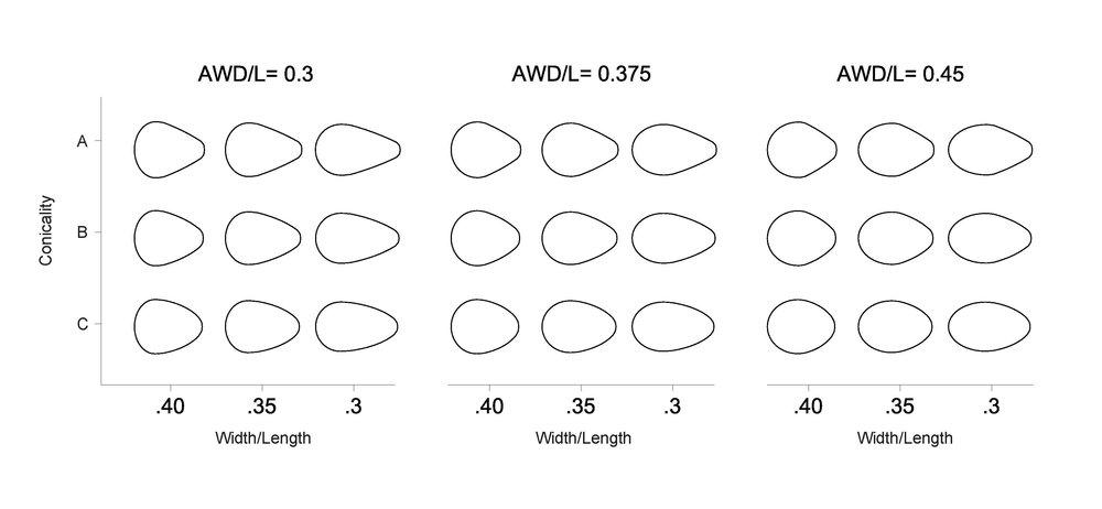 outline 3V.jpg