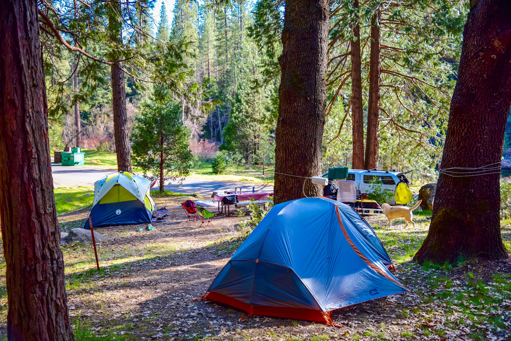 Wawona Campground, Loop A