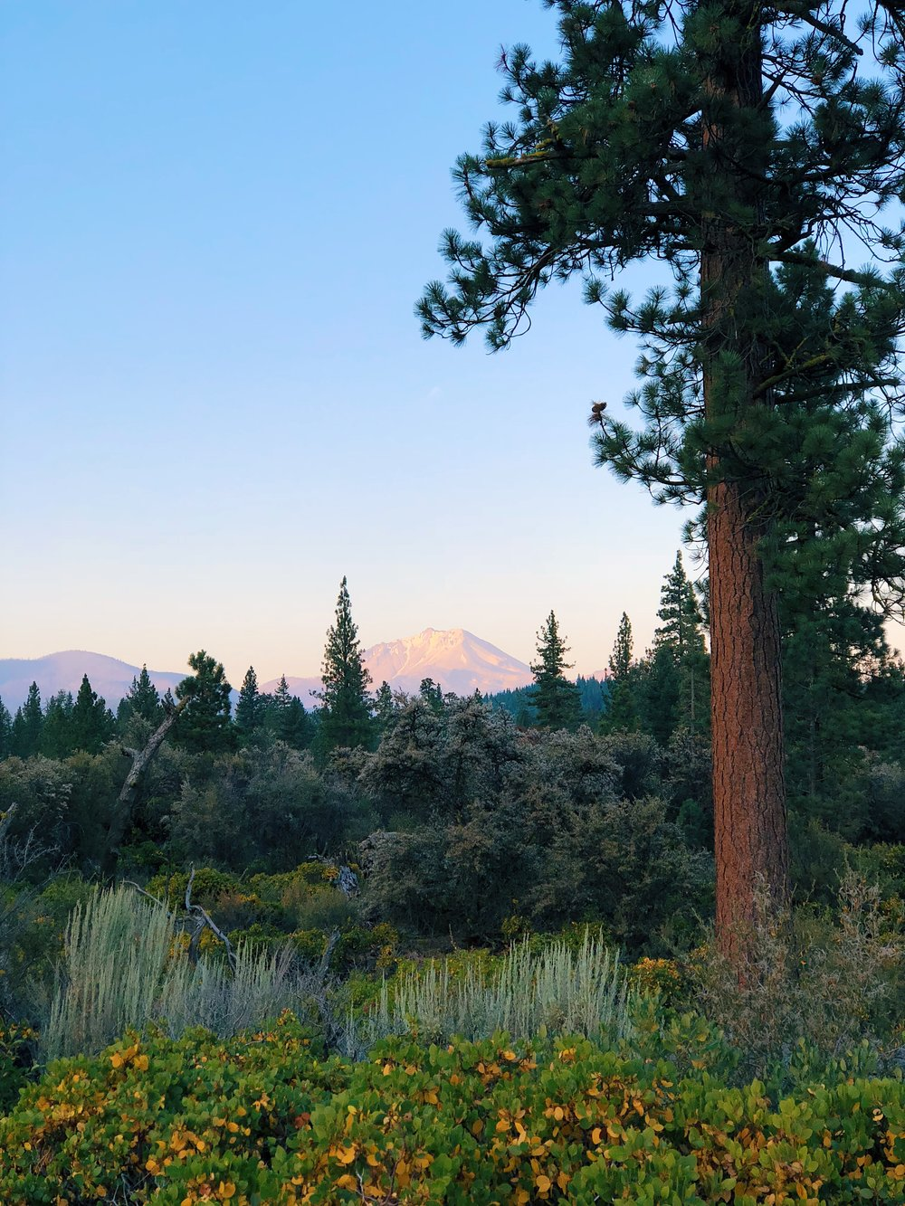Alpenglow on Lassen!