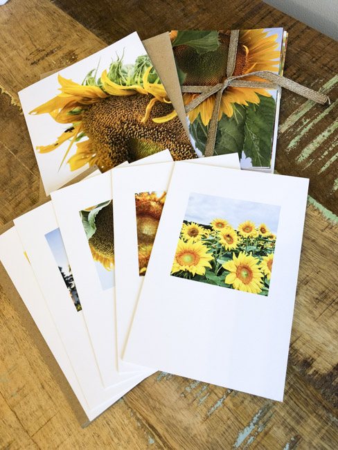 Jayne Guertin | Note Cards $12/pk