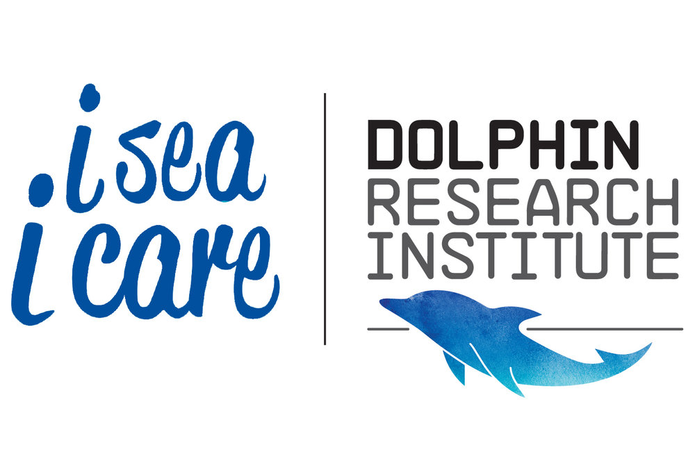 Dolphin Research Institute.jpg