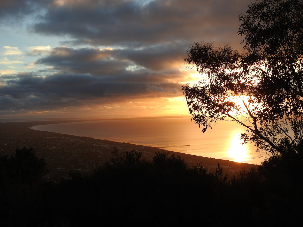 View from Arthurs Seat, Mornington Peninsula.jpeg