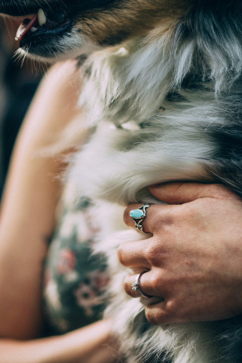 Close up of engagement ring by a dog