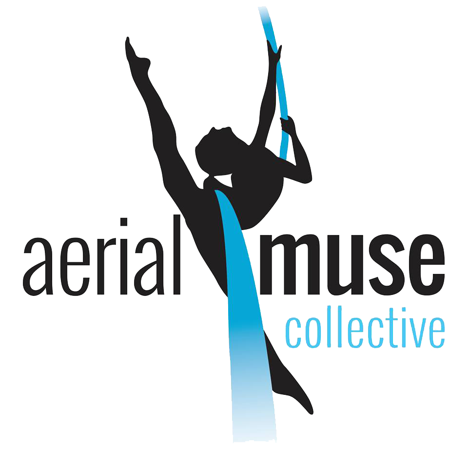 aerial muse logo.png
