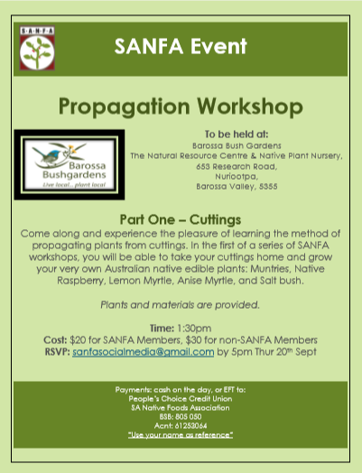 Propagation Workshop Pt1.png
