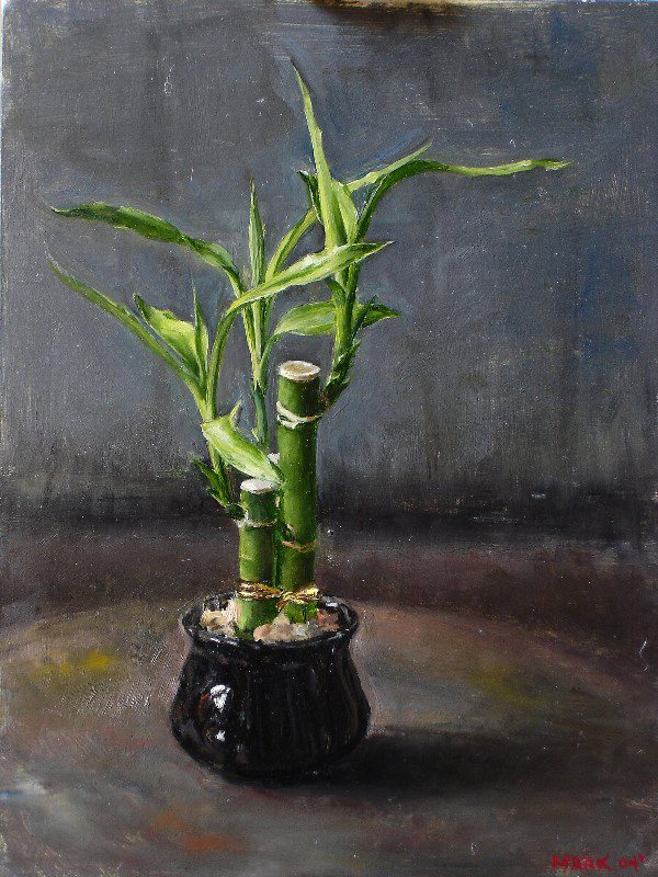 "Lucky Bamboo,  9""x12"" oil on panel"