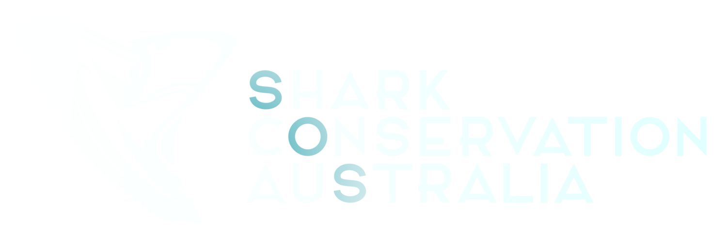 Shark Conservation Australia
