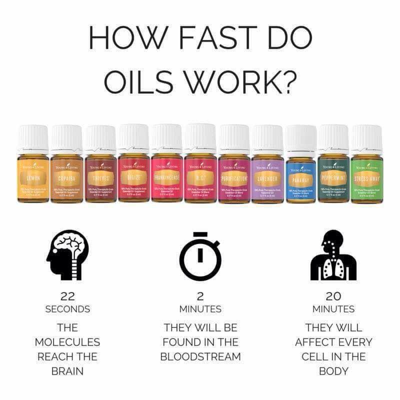 Hur fort oljor verkar i kroppen.jpg