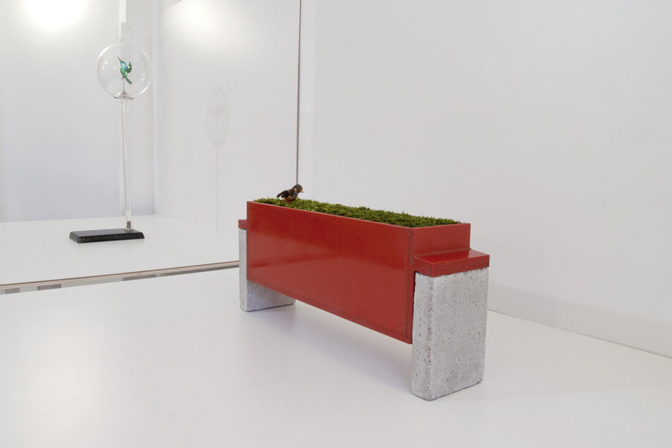 RED-BELLIED THRUSH AND HUMMINGBIRD, 2012