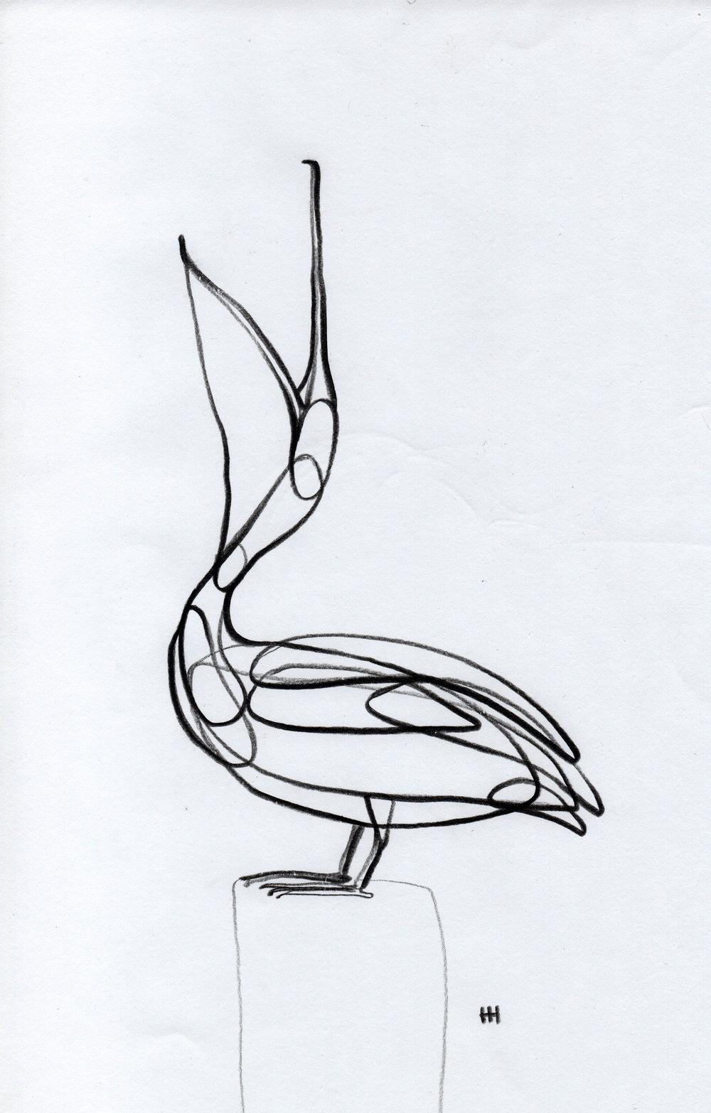 PticyLinejnye_0 11.jpg