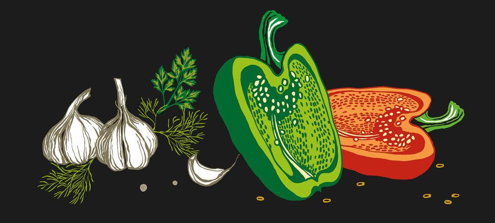 illustrations 5.jpg
