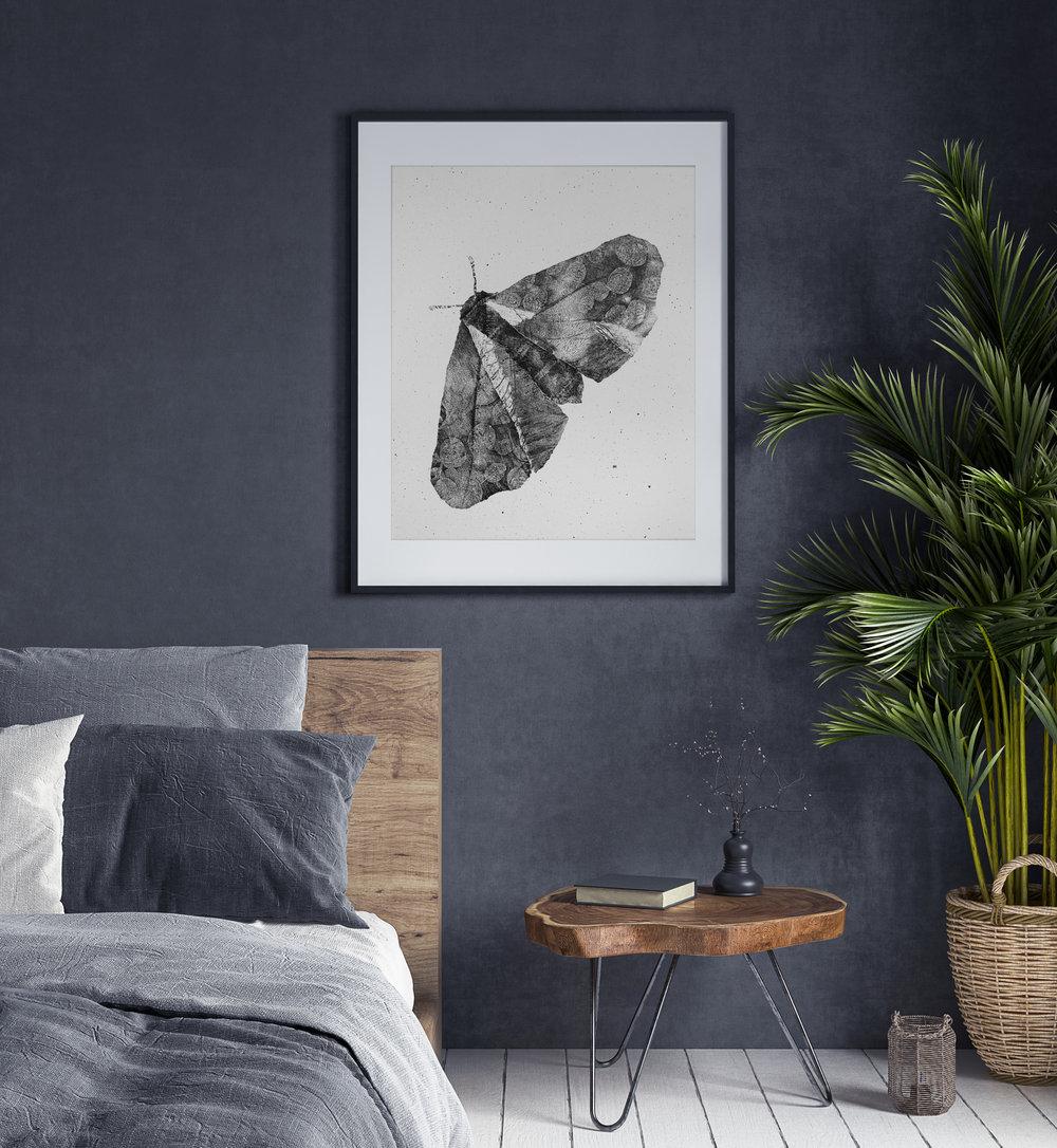 interior_moth_2.jpg