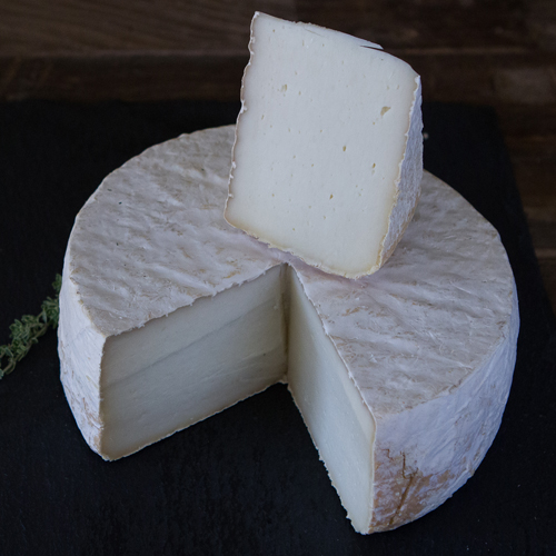 Old Kentucky Tomme Capriole Goat Cheeses
