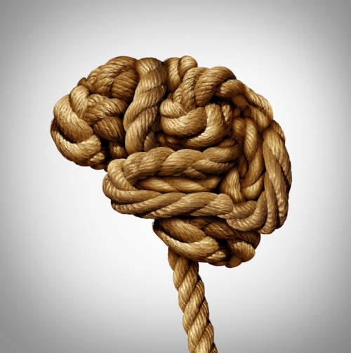 Knotted brain.jpg