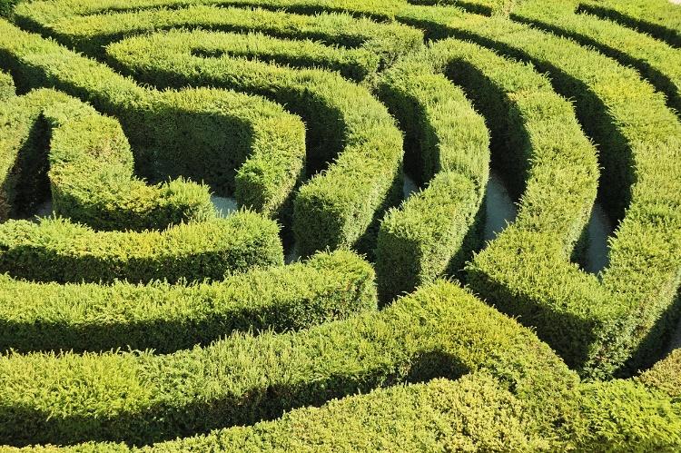 Hedge Maze.jpg