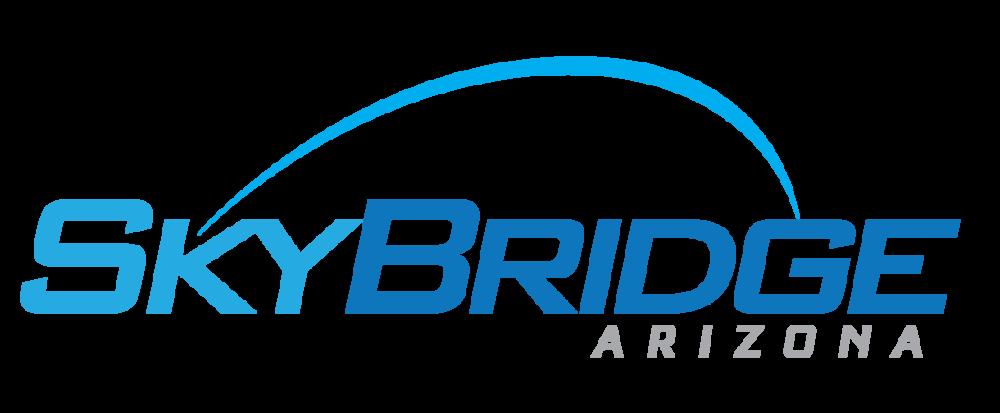 SkyBridge logo v.6.png