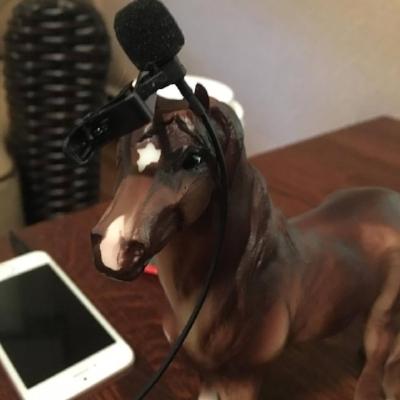 horse mic.jpg