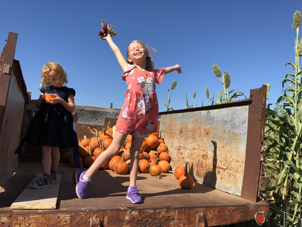 Relishing Fall, Sweet Berry Farms Visit