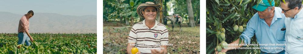 Happy Farm -