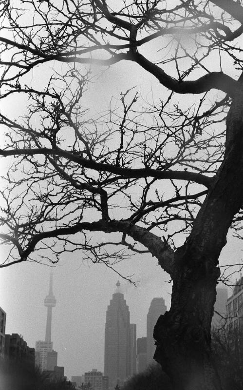 16_Toronto.jpg