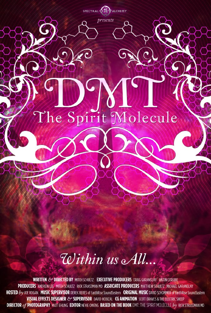 The Spirit Molecule  Dir. Mitch Schultz   (documentary feature)  Editing and re-recording.