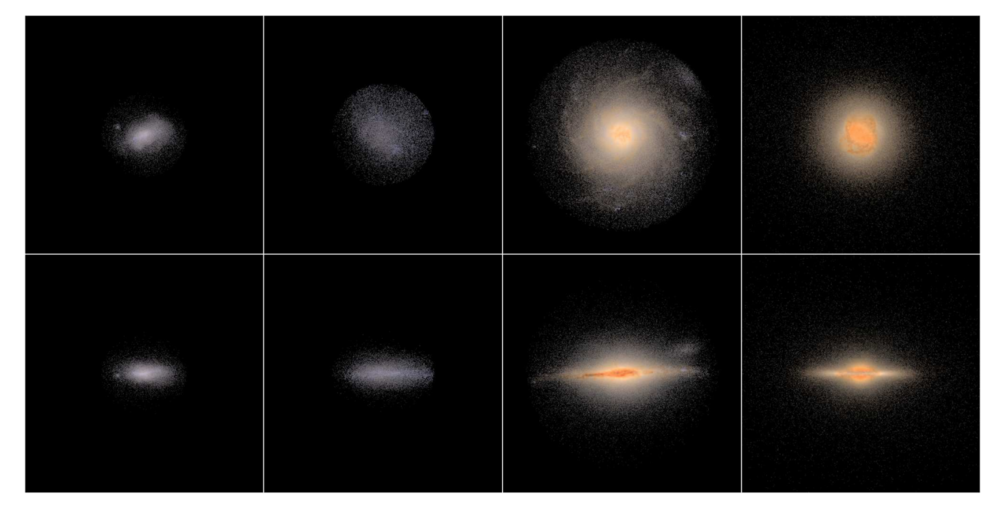 "Figure 1:  Face-on (upper panels) and edge-on (lower panels) views of four selected ""test"" galaxies from the NIHAO simulation suite arranged from left to right by increasing mass. Galaxies have been processed through the Monte Carlo radiative transfer code sunrise. Images are 50 kpc on a side.."