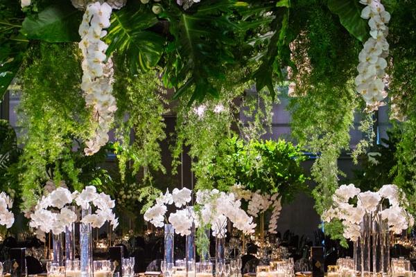 a modern fairytale forest