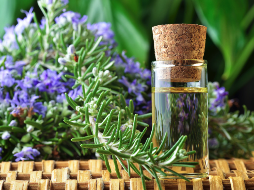 Rosemary Oil - I have been using this to help my digestion and apparently to boost my mental activity! I mix it with some Sweet Almond Oil and massage it on my stomach at the end of a long day. It smells great and so far has really helped me connect and pay attention to what makes my tummy bloat!