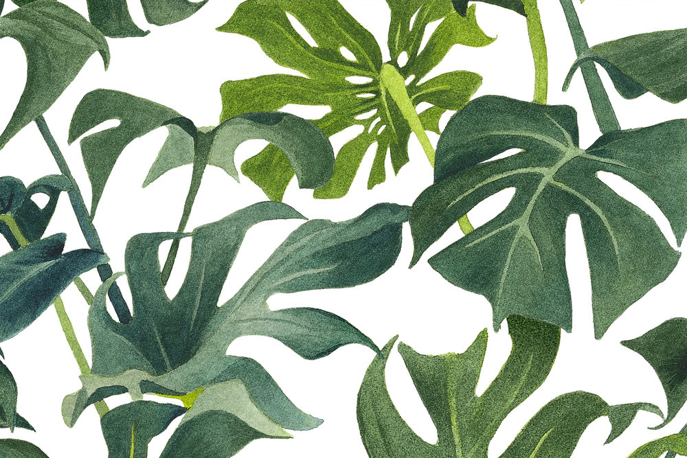 Copy of Foliage Greenery fabric
