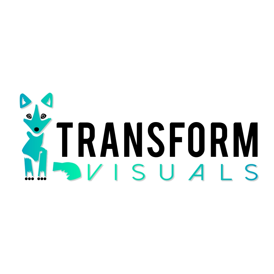 Transform Visuals