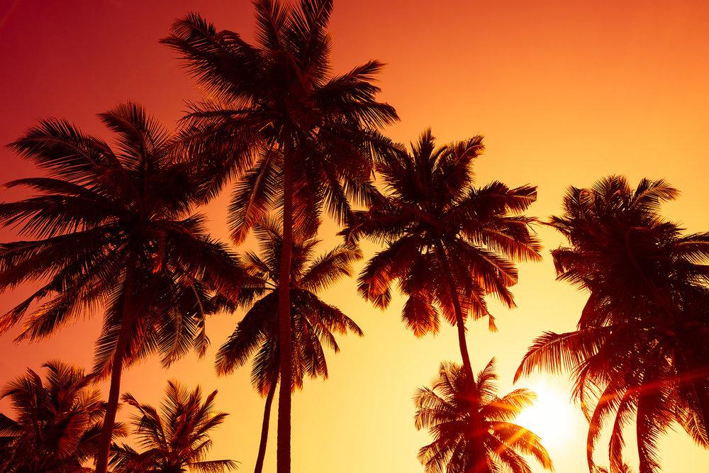 sunset_small.jpg