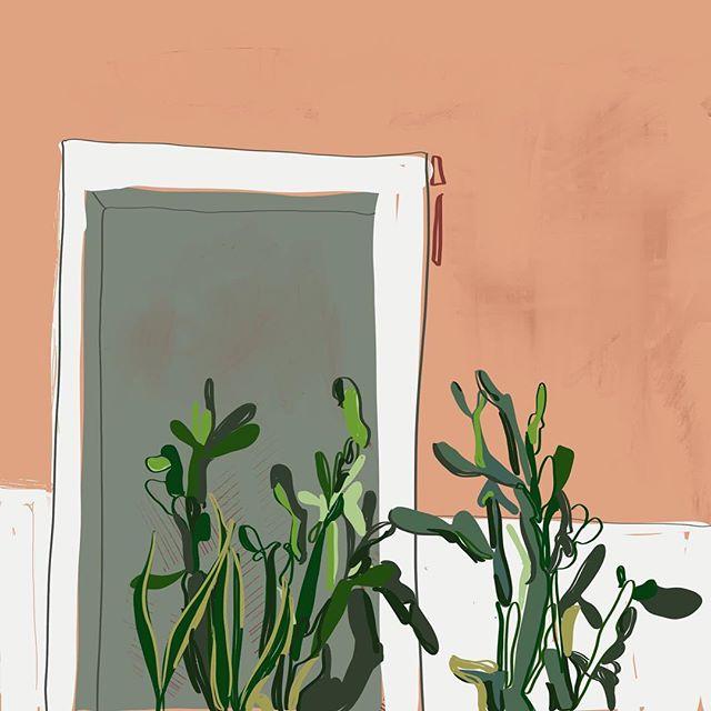 Plants are plants, Cactuses are statues. . . . . .  #flowersturk #rsa_nature #kings_flora #flowerporn #tgif_nature #flowerstalking #awesome_photographers #nature_sultans #flowerstarz #macro_perfection #floralfix #ptk_flowers #florecitas_mx #ig_flowers #floral_secrets #superb_flowers #floralstyles_gf #splendid_flowers #macro_mood #flowersandmacro  #puertorico #viejosanjuan #sanjuan #sanjuanpr #oldsanjuan #elviejosanjuan #iphoneography #iphoneonly #iphonesia #iphoneography #focalmarked