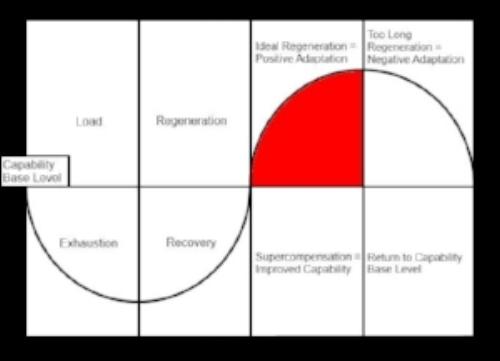 Progressive Overload Principle