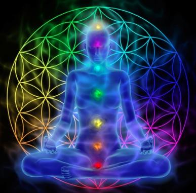 meditatedna.jpg