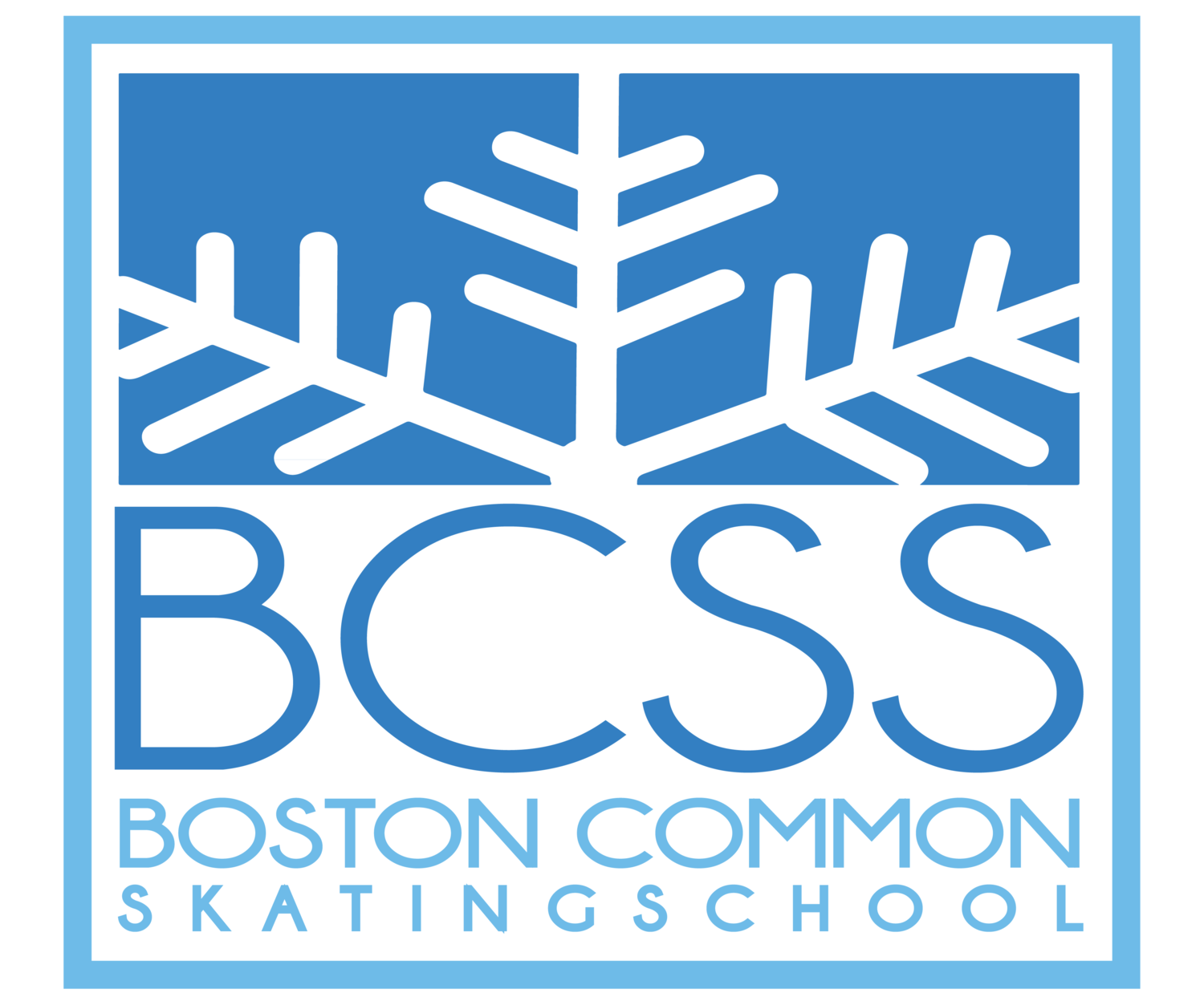 Boston Common Skating School