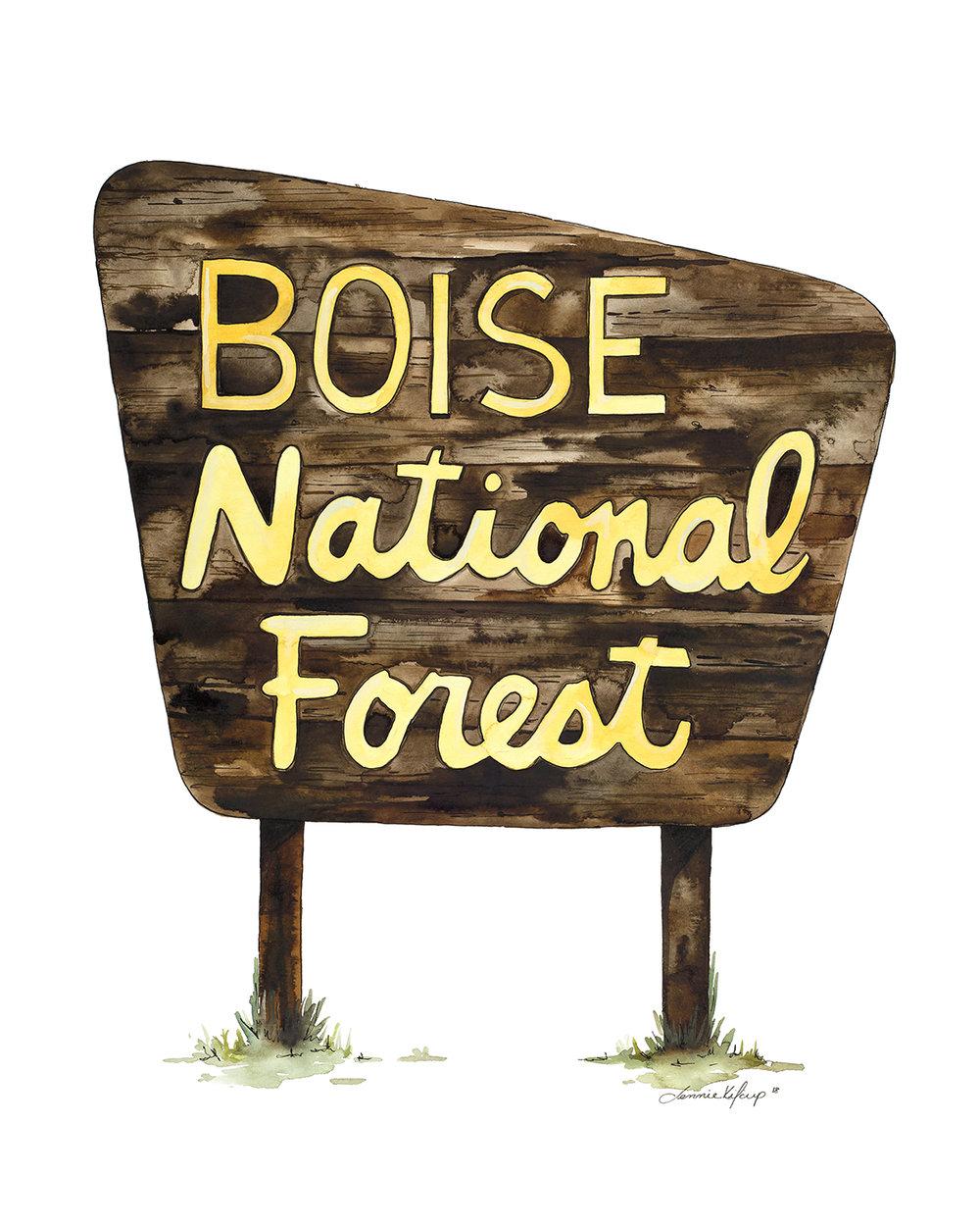 Boise National Forest.jpg