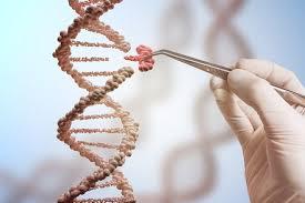 CRISPER-Cas9 Gene editing