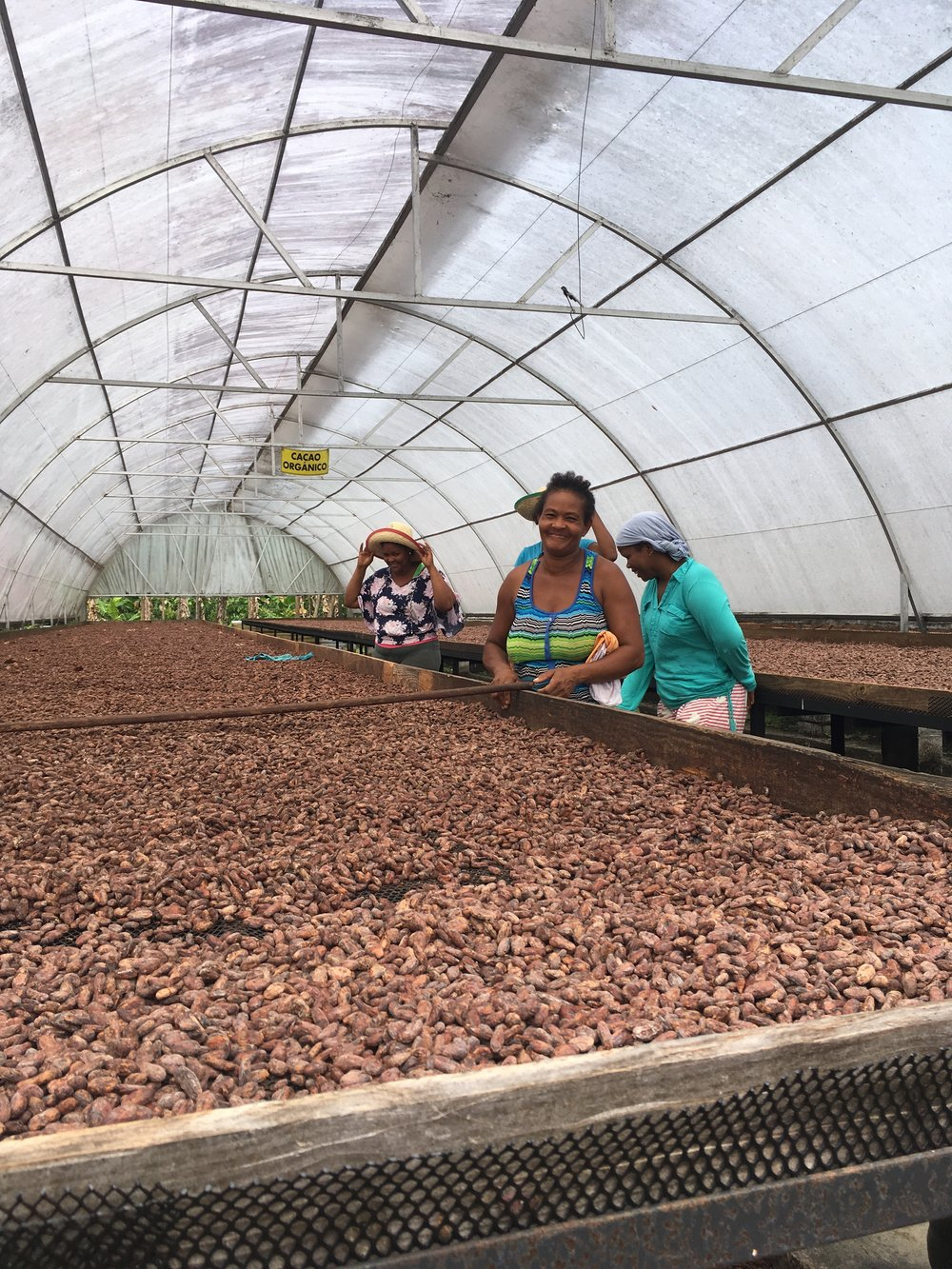 Consciously Sourced - Cacao organically grown and cared by our friends who are passionate farmers that love chocolate as much as you do and are committed to make the world a better place by mindfully farming and maintaining the natural balance for the future health of their community and yours.