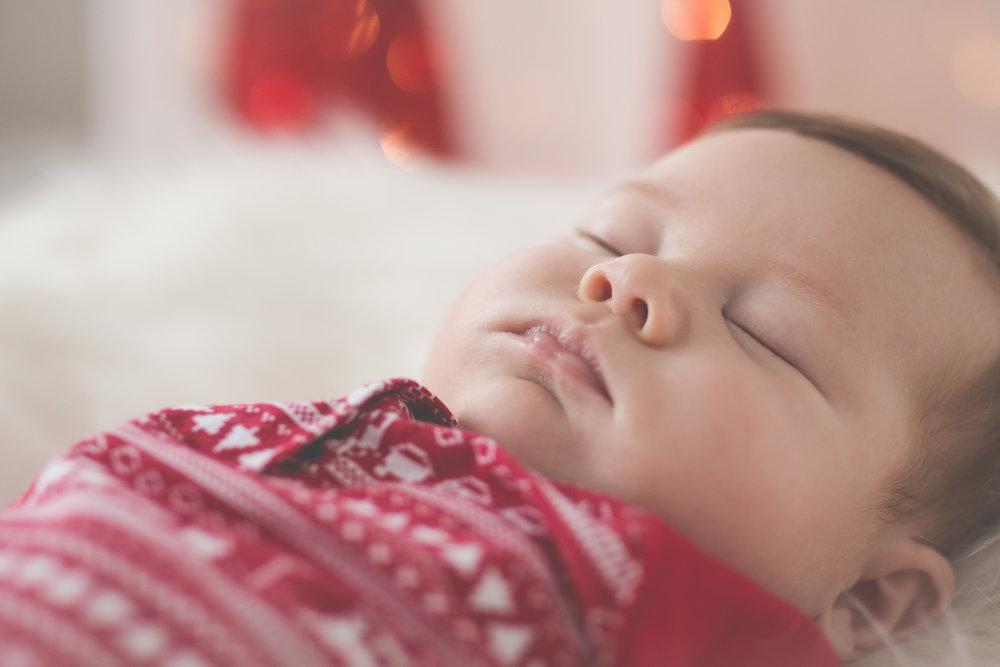 Deacon.Sleeping.CloseUp.Haze-9564.jpg