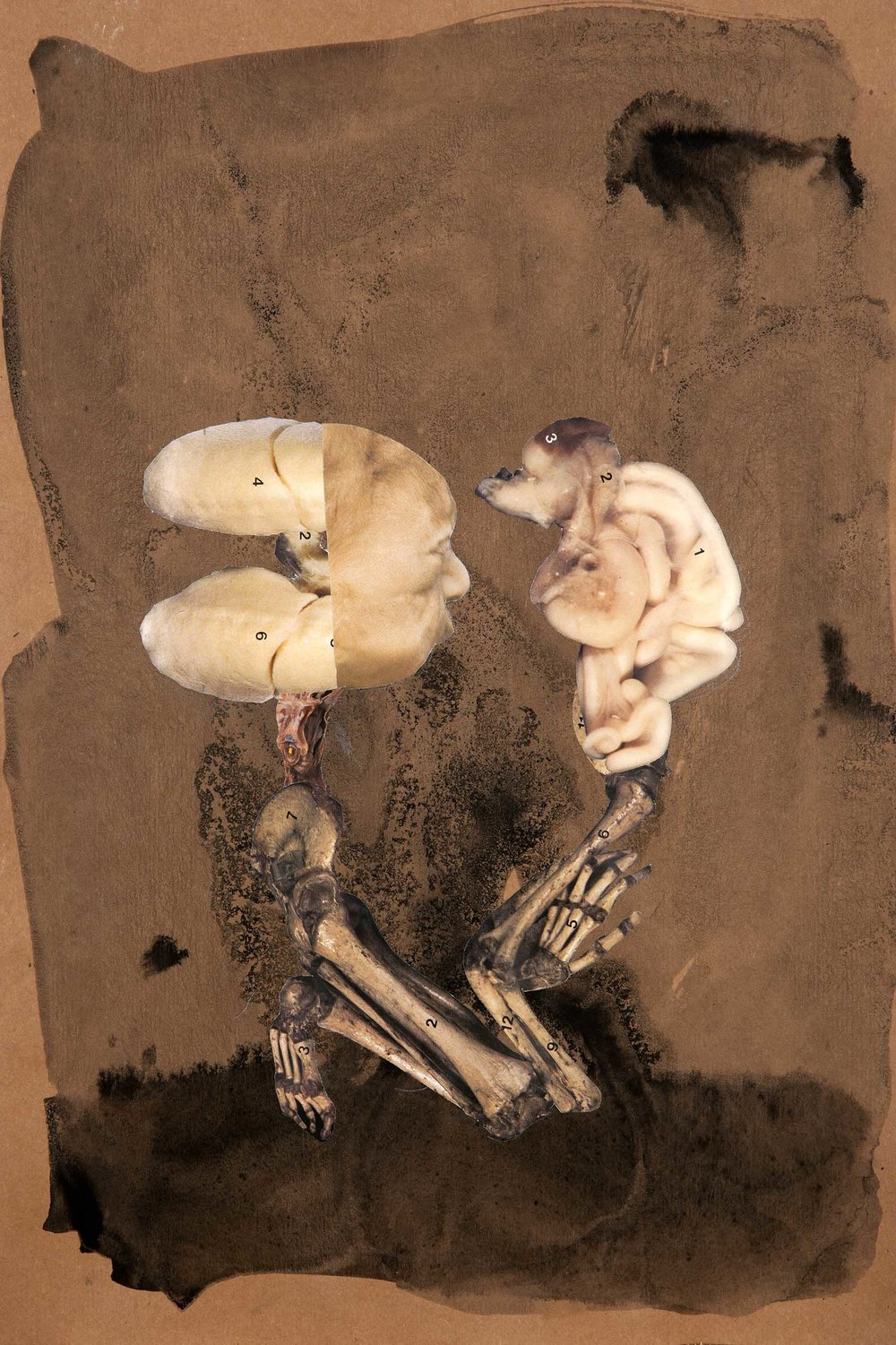 First Performance of Hamlet After the Armageddon  , 2012.Collage and indian ink on paper, 42,5 x 28,6 cm.