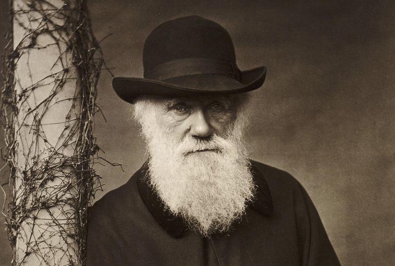 Charles-Darwin-3000-3x2gty-58b9982e5f9b58af5c6a277f.jpg
